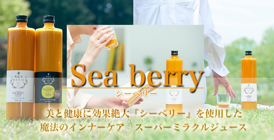 Seabery_inner_top_960-490.jpg