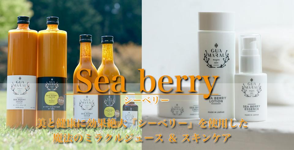 Seabery_top_960-490.jpg